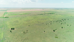 Sudan TX Farm & Ranch Under Contract: $134,250