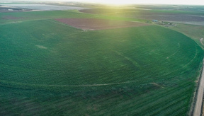 Lazbuddie TX Farm & Ranch For Sale: $400,000