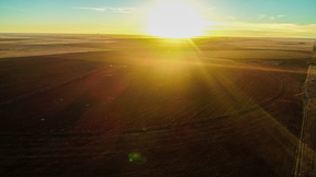 Dimmitt TX Farm & Ranch For Sale: $880,000