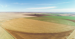 Lazbuddie  TX Farm & Ranch For Sale: $1,000,000