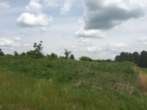 Residential Lots & Land Sold: Bledsoe Loop Rd