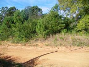 Residential Lots and Land Sold: County Road 409