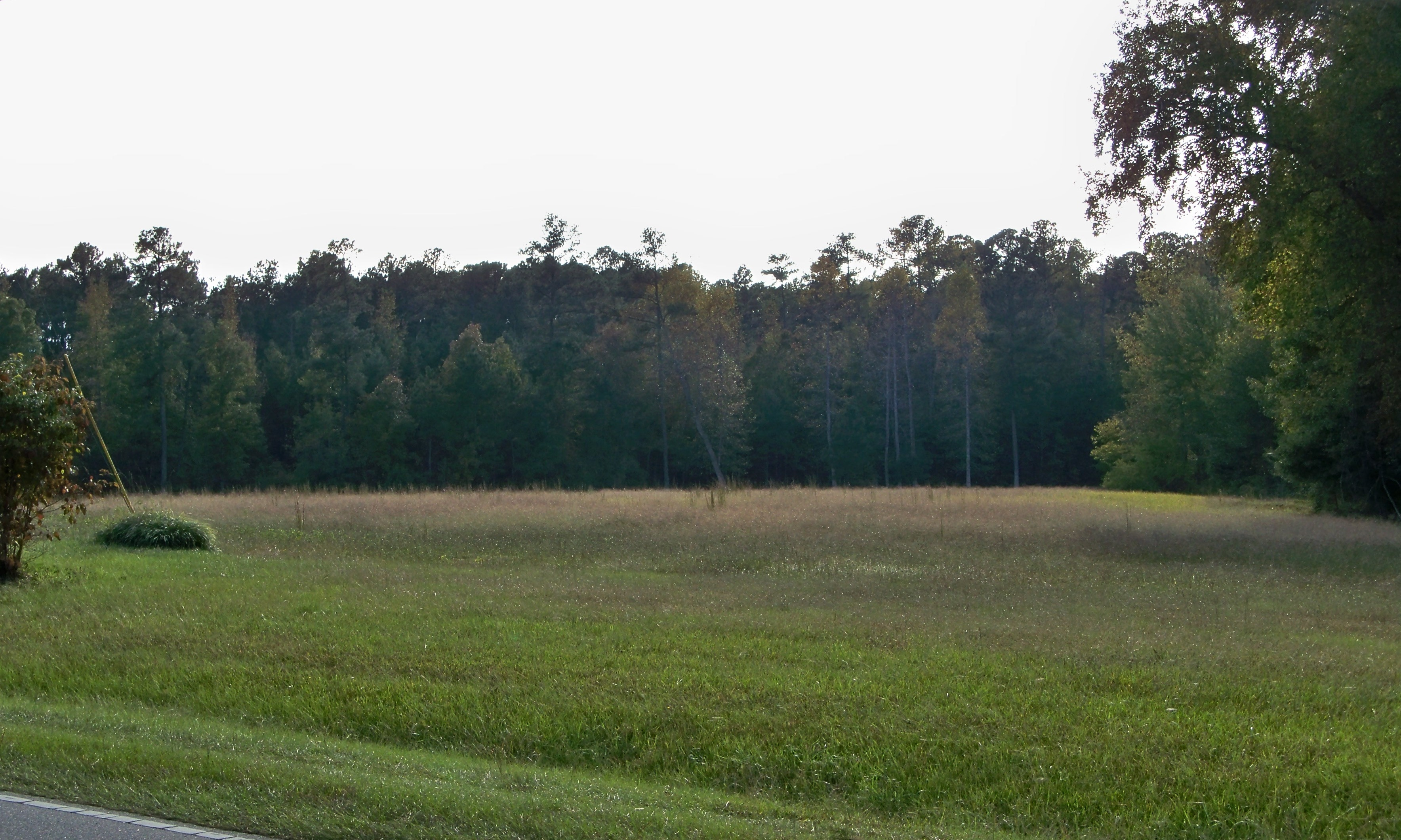 Build your dream home here! Convenient to Raleigh, Wilson, Rocky Mount.