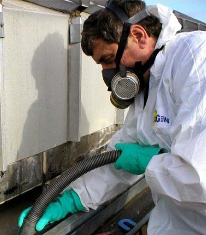 Mold Testing   Elmhurst, Wood Dale Real Estate   Homes for