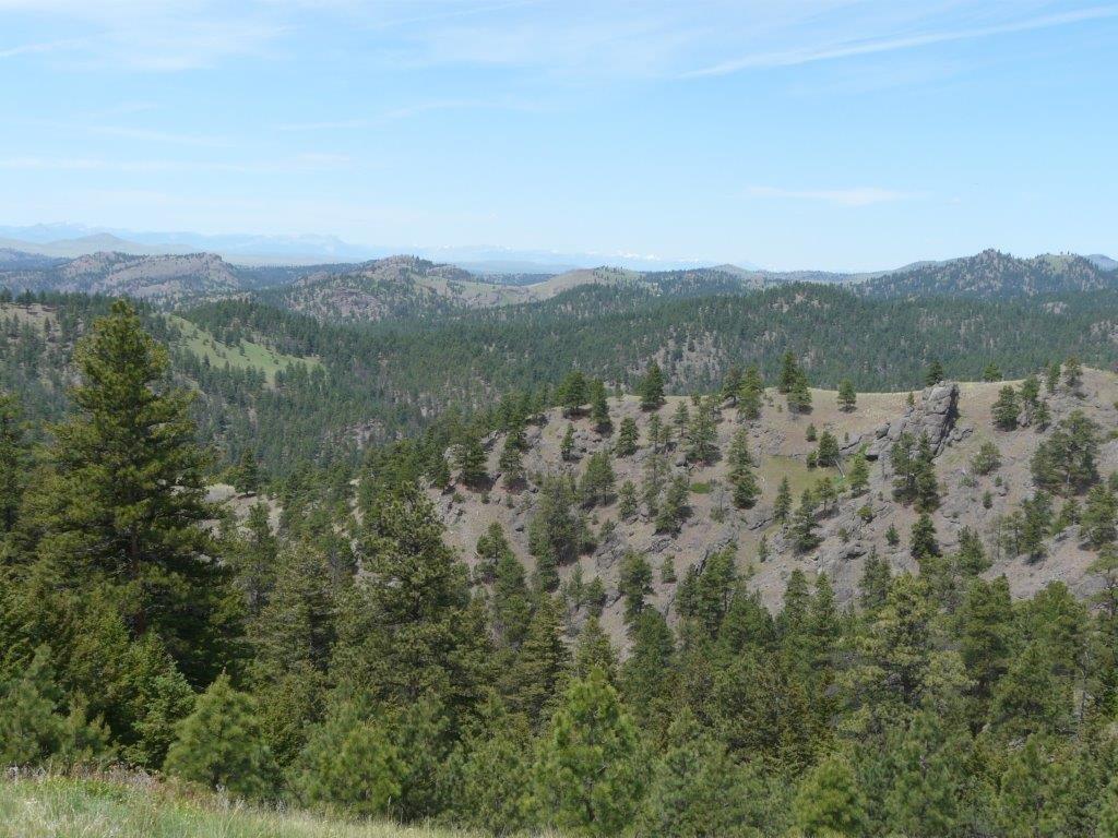 Sugarloaf Mountain D1