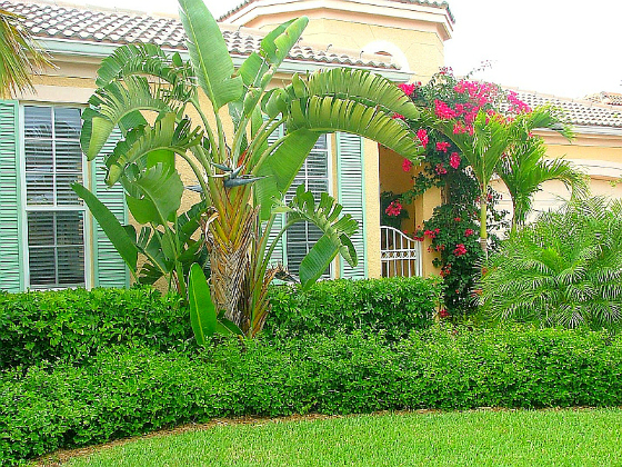 OLD ORCHID MEDITERRANEAN STYLE ISLAND HOMES VERO BEACH GATED COMMUNITY