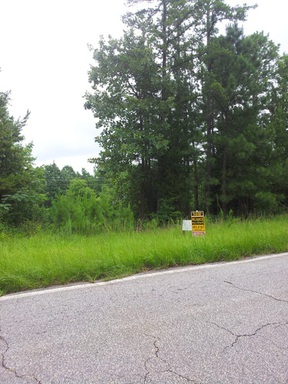 Lots And Land For Sale: County Road 87