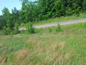 Residential Lots and Land For Sale: County Road 695