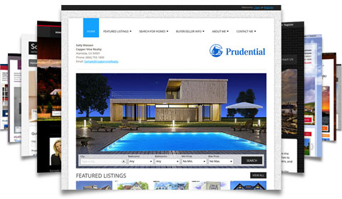Hundreds of Customizable Real Estate Web Designs
