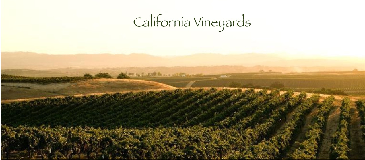 Northern Ca Vineyards for sale