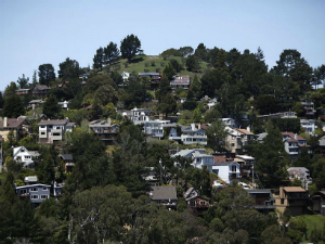Homes for Sale in Mill Valley, CA