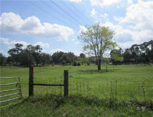 Acreage for sale in Houston County TX