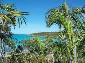 Lots And Land For Sale: Little Bay