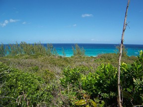 Lots And Land For Sale: Rainbow Bay
