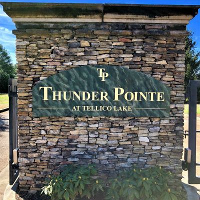 Homes for Sale in Thunder Pointe, TN