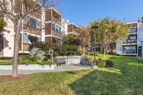 San Francisco CA Condo/Townhouse Sold: $580,000