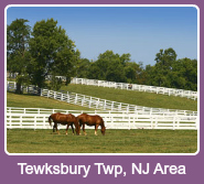 Homes for sale in the Tewksbury Twp. area