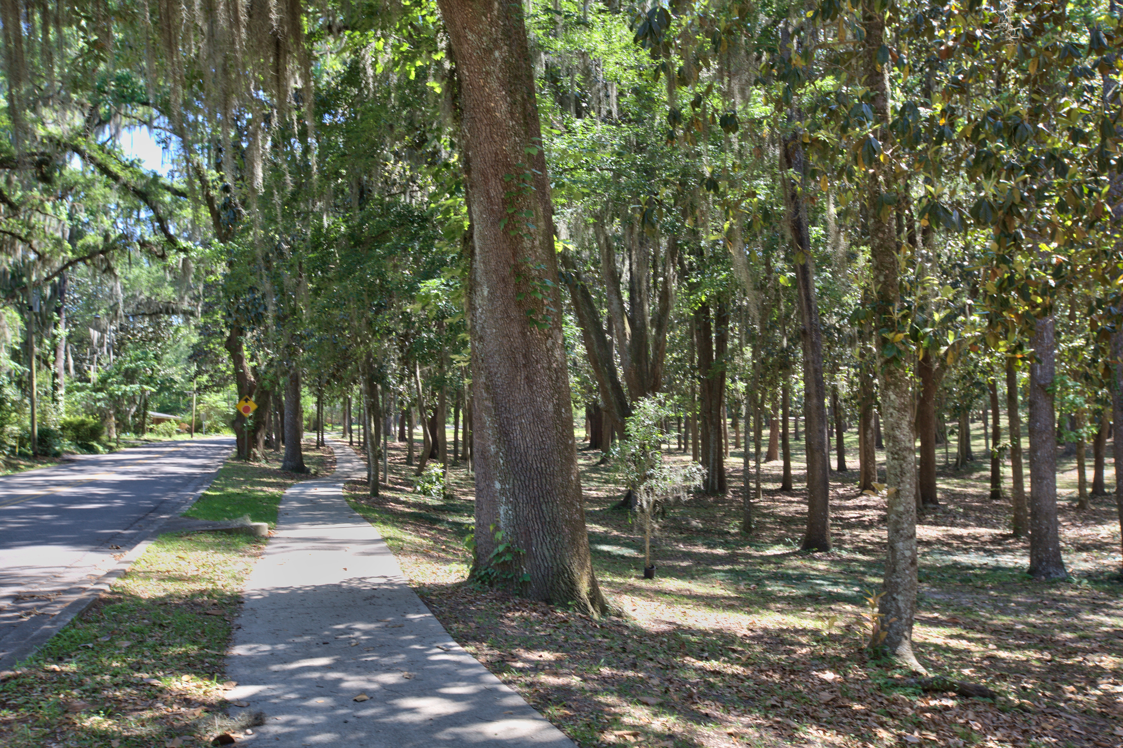 Myers Park Tallahassee Homes For Sale Property Search