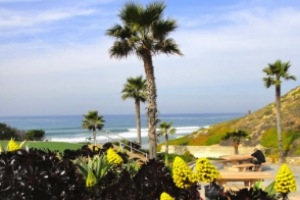 Homes for Sale in Solana Beach, CA