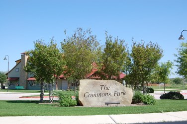 Homes for sale at Commons at Rowe Lane