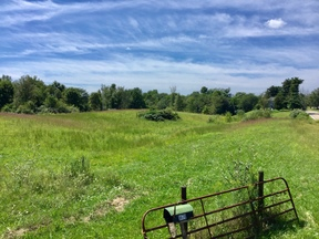 Lots and Land For Sale: 8470 Claypike Rd.