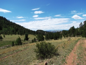Cripple Creek CO Lots & Land Under Contract: $226,000