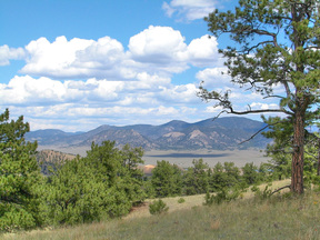 Lake George CO Lots & Land For Sale: $419,000