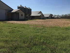 Lena MS Farm/Poultry For Sale: $1,275,000