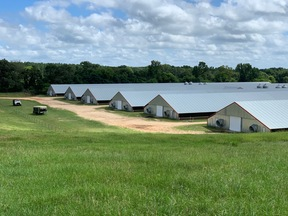 Paulding MS Chicken/Cattle Farm For Sale: $6,000,000