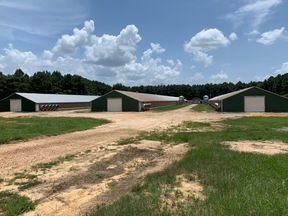 MIZE MS CHICKEN FARM For Sale: $785,000