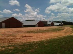 Farm Sold