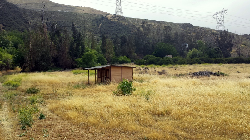 View facing East of a small tack shed
