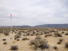 Residential Lots & Land For Sale: 2.31 Acres near Harper Dry Lake