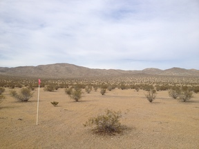 Helendale CA Residential Lots & Land For Sale: $20,995