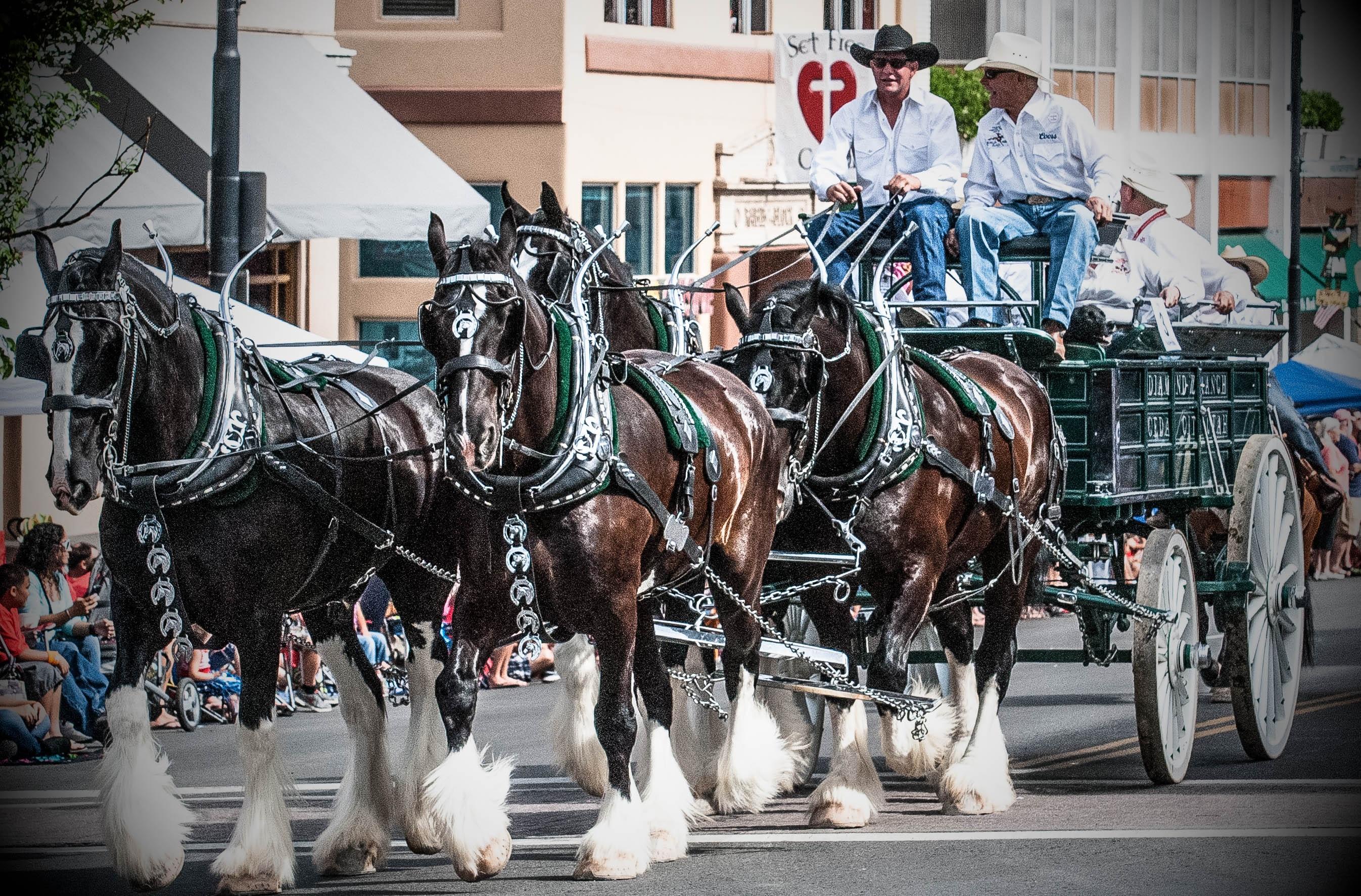 Prescott Arizona Event Calendar