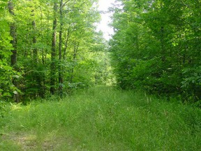 Residential Lots and Land For Sale: 7800 State Highway 13