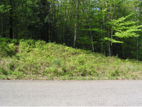 Saranac Lake NY Lots And Land Closed: $23,000