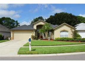 Valrico FL Single Family Home Sold: $275,000