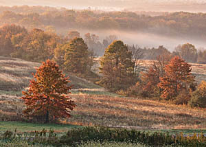 Bucks County Countryside