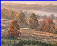 Pastel Morning ~ Bucks County Countryside