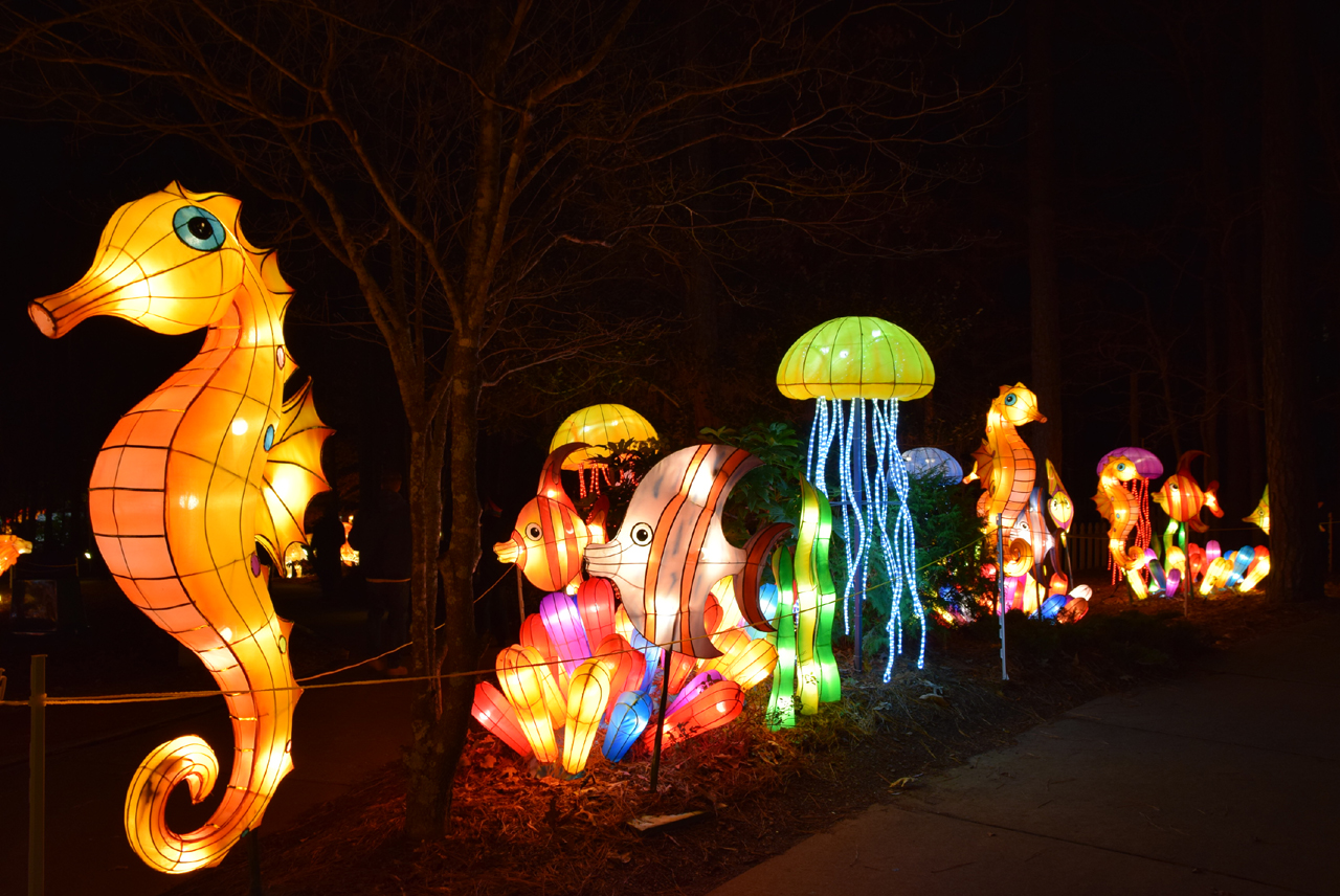 Chinese Lantern Festival, Cary