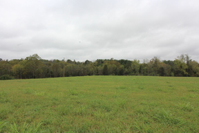 Edinburg VA Residential Lots & Land For Sale: $149,000