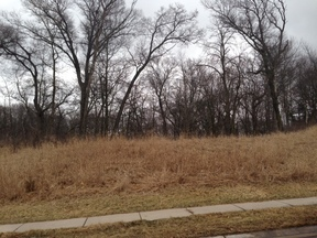 Residential Lots & Land Sold: 9953 SE 13th Avenue