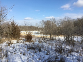 Residential Lots & Land Sold: Xxx 137th Avenue SE