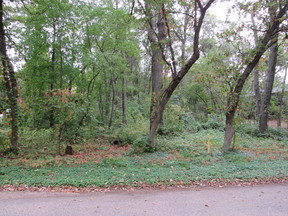 Residential Lots & Land For Sale: Xxx 109th Avenue SE