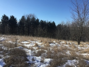 Residential Lots & Land For Sale: Xxx 137th Avenue SE