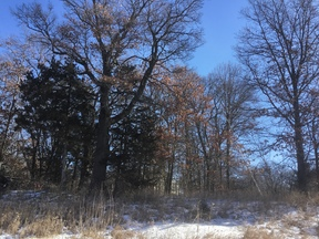 Becker MN Residential Lots & Land For Sale: $29,900