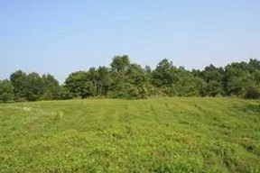 Residential Lots & Land For Sale: 378 N. Kaisertown Road