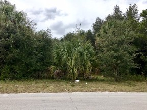 Residential Lots & Land Sold: Willow Oak Road