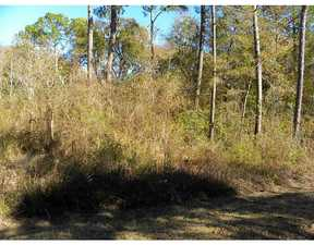 Residential Lots and Land For Sale: 0 Wright Ave.